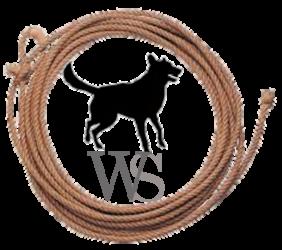 Western Shepherd